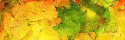 Elm Digital Art - Autum Leaves by Elizabeth McTaggart