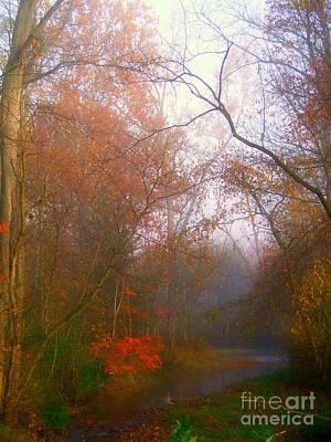 Photograph - Autum Stream And Mist by Scott B Bennett