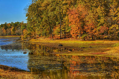 Photograph - Autumn   by Kathi Isserman