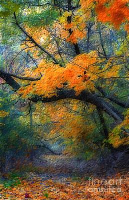 Photograph - Autumn 4 by Jeff Breiman