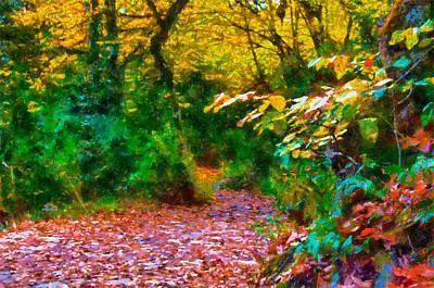 Photograph - Autumn - 6 by Okan YILMAZ