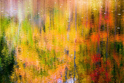 Photograph - Autumn Abstract by Eleanor Abramson