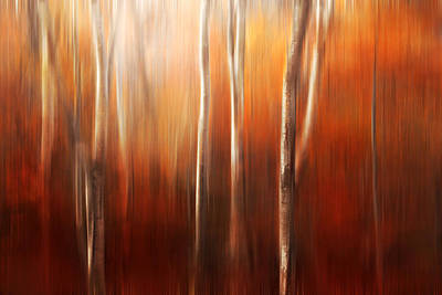 Autumn Photograph - Autumn Abstract by Magda  Bognar