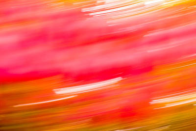 Autumn Leaf Photograph - Autumn Abstract by Shane Holsclaw