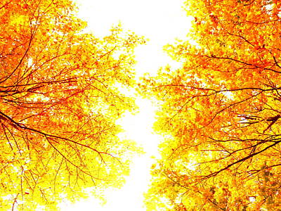 Autumn Abstract Art Print by Tim Good