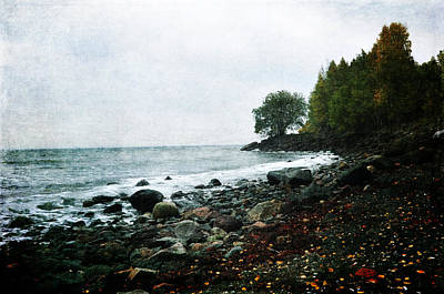 Photograph - Autumn Afternoon By The Ocean by Randi Grace Nilsberg