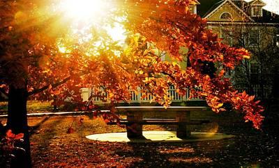 Autumn Afternoon Art Print by Pamela Mandeville