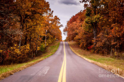 Photograph - Autumn Along The Rural Road by Julie Clements