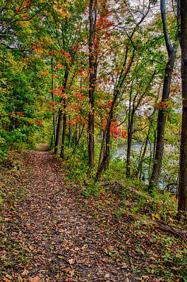 Photograph - Autumn Along The Trail by Gene Sherrill