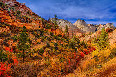 Photograph - Autumn Arroyo by Greg Norrell