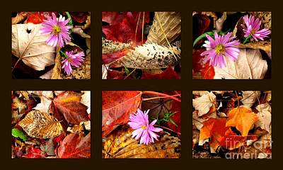 Photograph - Autumn Art 1 by France Laliberte