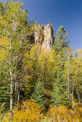 Photograph - Autumn Aspen Along The Little Spearfish by Dakota Light Photography By Dakota