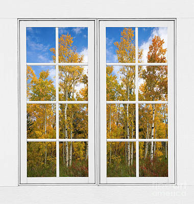 Corporate Art Photograph - Autumn Aspen Forest White Window Frame View by James BO  Insogna