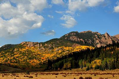 Photograph - Autumn Aspens Climbing Moutainside by Marilyn Burton