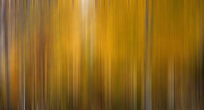 Photograph - Autumn Aspens Impressionistic by TL  Mair