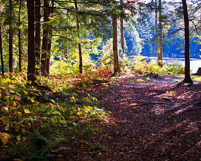 Photograph - Autumn At Cary Lake II by David Patterson
