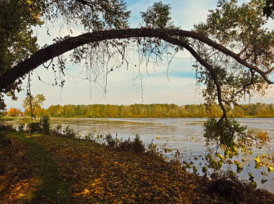 Photograph - Autumn At East Harbor State Park 5 by Shawna Rowe