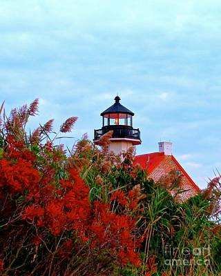 Photograph - Autumn At East Point Light by Nancy Patterson