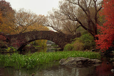 Photograph - Autumn At Gapstow Bridge by Cornelis Verwaal