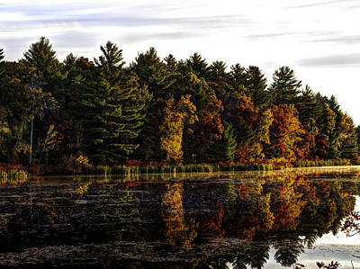 Autumn At It's Finest 2 Art Print by Thomas Young
