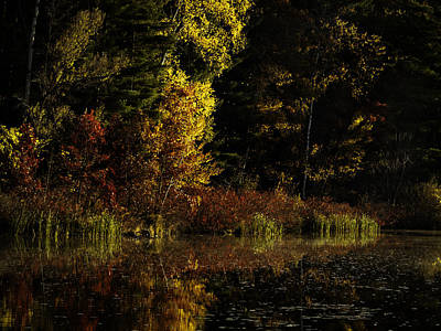 Autumn At It's Finest Art Print by Thomas Young