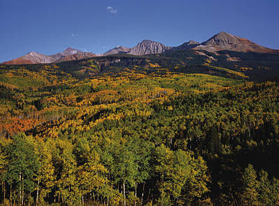 Photograph - Autumn At Mt. Wilson by Paul Breitkreuz