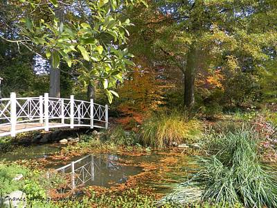 Photograph - Autumn At Sayen Gardens by Nance Larson