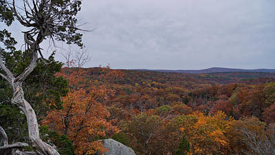 Photograph - Autumn At Shawnee Forest by Sandy Keeton