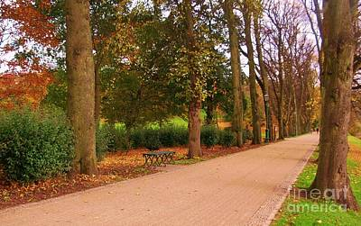 Photograph - Autumn At The Avenue Of Limes by Joan-Violet Stretch