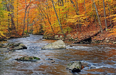 Autumn At The Black River Art Print by Dave Mills