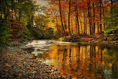 Autumn At The Creek Art Print by Janet Lee