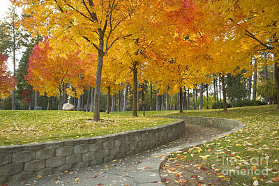 Photograph - Autumn At The Park by Idaho Scenic Images Linda Lantzy