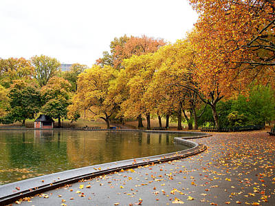 Photograph - Autumn At The Sailboat Pond by Cornelis Verwaal