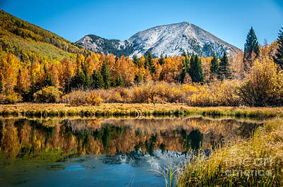 Autumn At Warner Lake Art Print