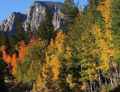 Autumn At Wheeler Peak In Nevada Art Print