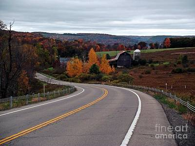 Photograph - Autumn Avenue by Christian Mattison