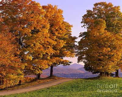 Autumn Backroad View Art Print by Alan L Graham