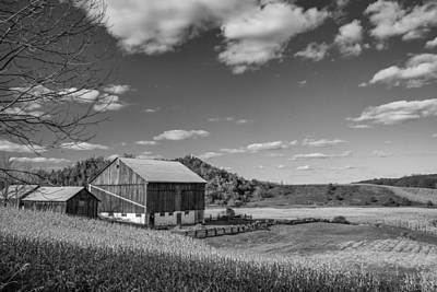 Autumn Barn Monochrome Art Print by Steve Harrington