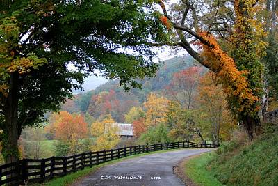 Autumn Beauty Around The Bend Art Print by Carolyn Postelwait
