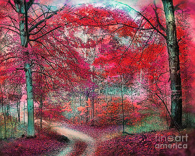 Photograph - Autumn Beeches by Gina Signore