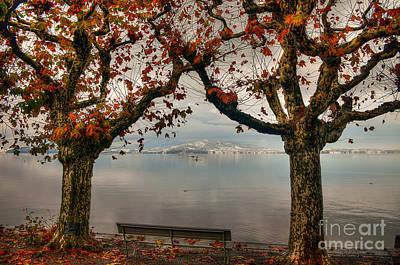 Autumn Bench Art Print by Caroline Pirskanen