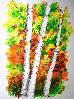 Mixed Media - Autumn Birches by Catherine Howley