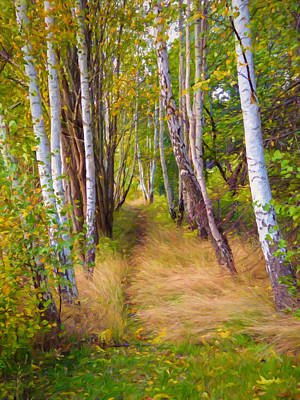 Painting - Autumn Birches by Impressionist Art