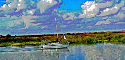 Photograph - Autumn Blue Skys On The Delta by Joseph Coulombe