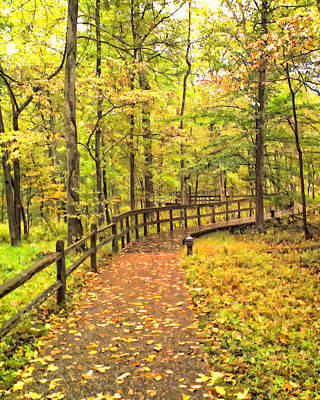 Photograph - Autumn Boardwalk At Mammoth Cave National Park 2 by Greg Jackson