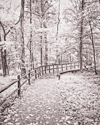 Photograph - Autumn At Mammoth Cave National Park B/w by Greg Jackson
