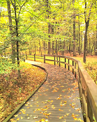 Photograph - Autumn Boardwalk At Mammoth Cave National Park by Greg Jackson