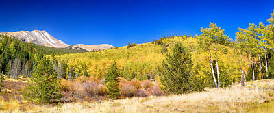 Photograph - Autumn Bonanza Panorama by James BO Insogna
