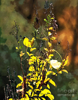 Autumn Bouquet Art Print by Gerlinde Keating - Galleria GK Keating Associates Inc