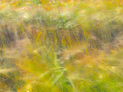 Wind Photograph - Autumn Breezes by Leland D Howard